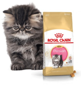 Royal Canin Persian Kitten 0,4/2/10 kg