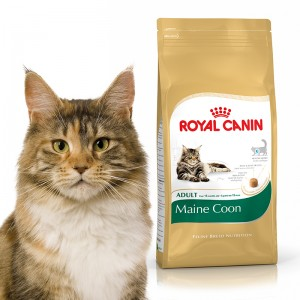 Royal Canin Maine Coon 0,4/2/4/10 kg